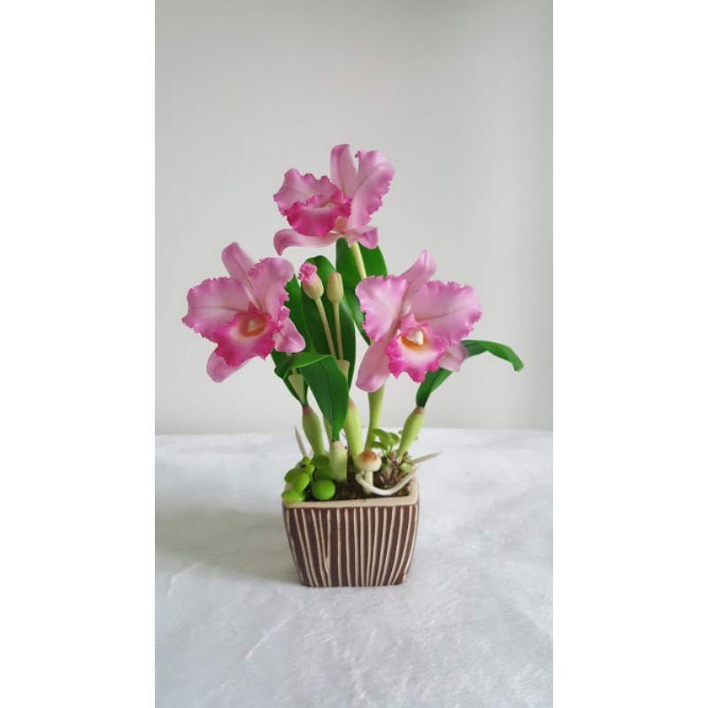 ดอกกล้วยไม้ประดิษฐ์แคทลียา ทำจากดินญี่ปุ่น พร้อมกระถางเซรามิกเหลี่ยม Artificial Orchid