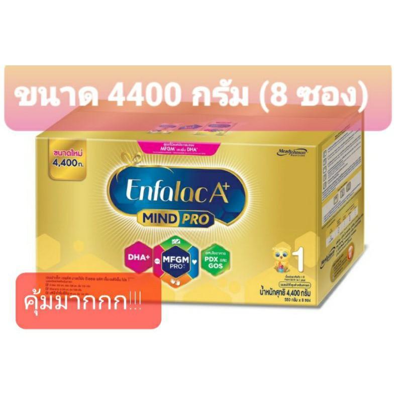 เอนฟา นม enfa นมเอนฟา เอนฟาแล็ค A+ สูตร 1#Enfalac A+ สูตร 1 ขนาด 4400 กรัม(1กล่องมี 8 ซอง)