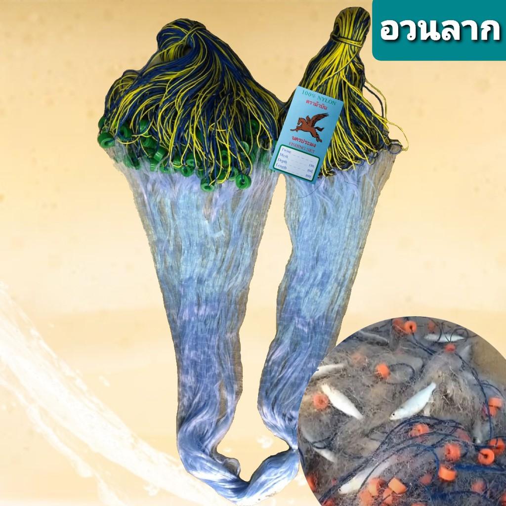 อวนลากปลาในคลอง ลึก 2ม ยาว 180 ม. อวนล้อมปลา รุมทุ่นตะกั่ว ข่ายดักปลา อวนจับปลา มองดักปลา มองปลิว อวนปลากระบอก เอ็นใยบัว