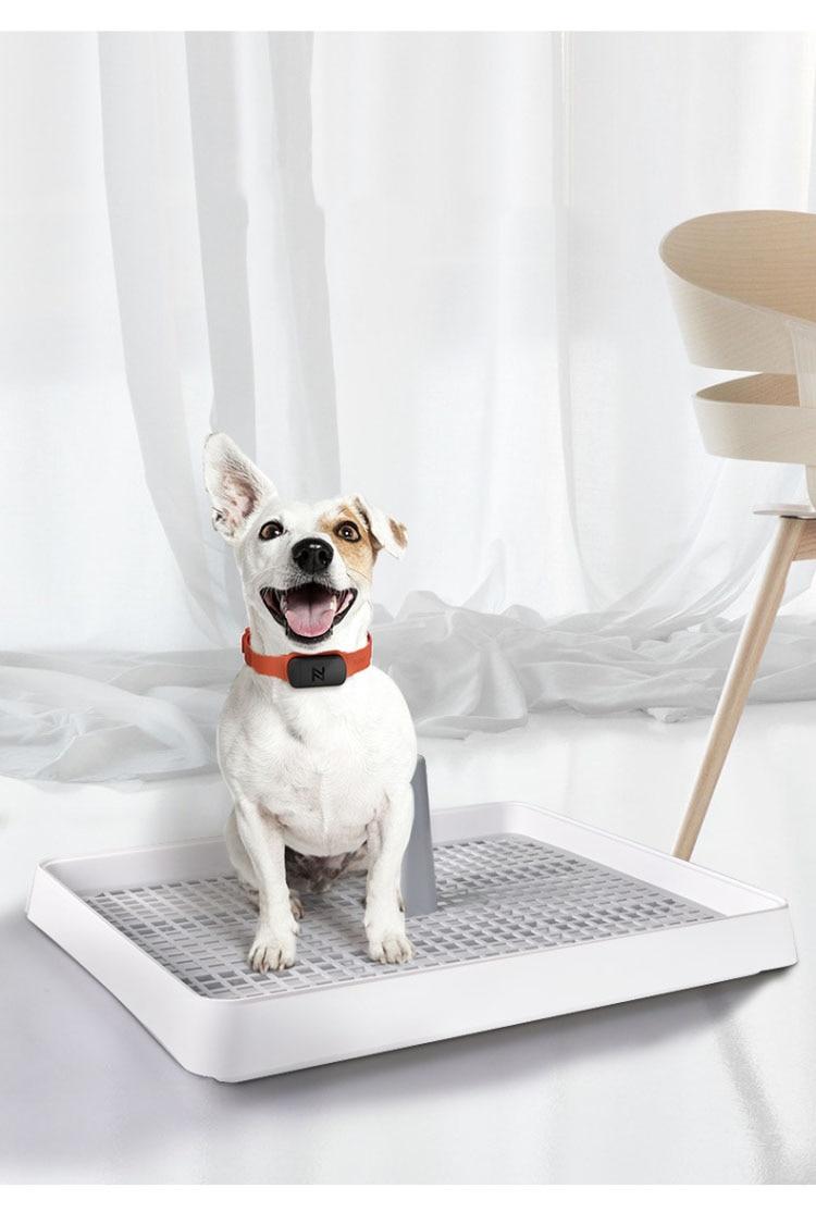 Portable Pet Toliet Training Plastic with Pillar Toilet Mat Training Potty  Dog Pad Tray Toilet Training Urinary Trainer ส่วนลดอีกต่อไป ฿1,180