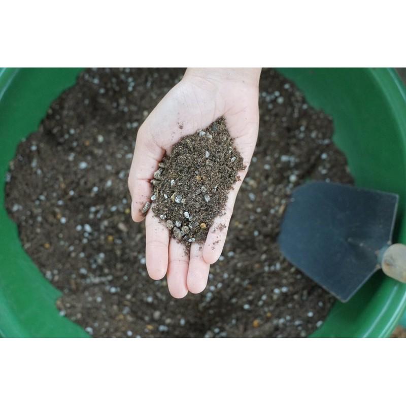 ดินเเคคตัส ดินกระบองเพชร ดินไม้อวบน้ำ 800 g.