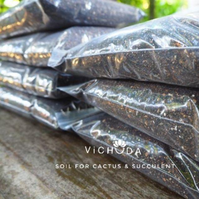 PLANTING TOOLS (Soil) ดินปลูกกระบองเพชร l ดินปลูกไม้อวบน้ำ