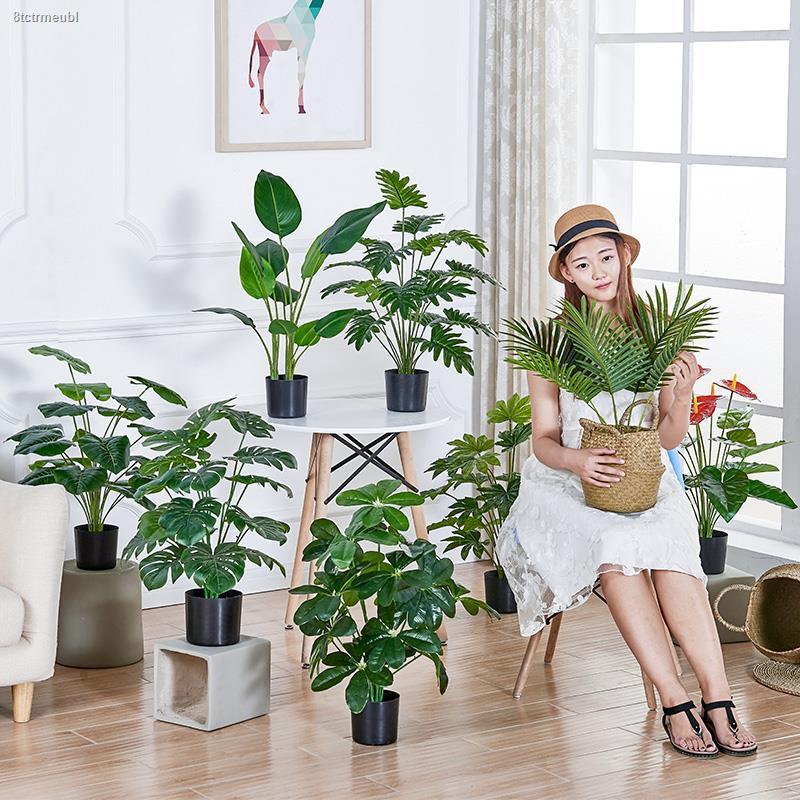 การจำลองพันธุ์ไม้อวบน้ำ♝♟ประดับต้นไม้ประดิษฐ์สไตล์นอร์ดิก กระถางต้นไม้ปลอมสีเขียวปลอม พืชภายในบ้าน ตกแต่งภายใน ห้องนั่งเ