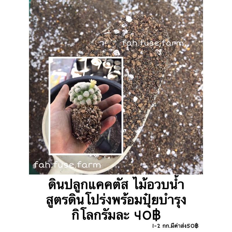 ดินปลูกแคคตัส(กระบองเพชร) ไม้อวบน้ำ สูตรดินโปร่ง