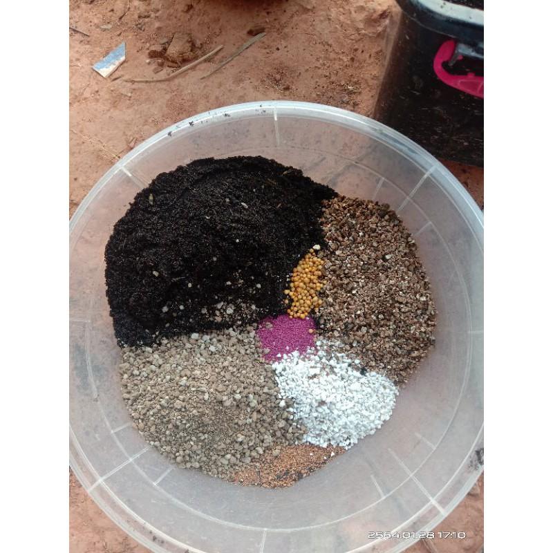 ดินปลูกแคคตัสแบบผสมเสร็จ พร้อมปลูก ดินปลูกไม้อวบน้ำ