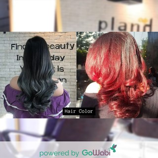 [E-Voucher] Plan H Hairsalon - Hair Color + Shiseido and Milbon Hair Treatment (All Hair Lengths)