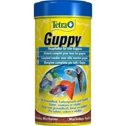 [พร้อมส่ง ของอยู่ไทย] Tetra Guppy 250 ml.(อาหารปลาหางนกยูงและปลาขนาดเล็ก แบบแผ่น) คุณภาพดี ส่งไว ส่งทุกวัน GREEN HOME