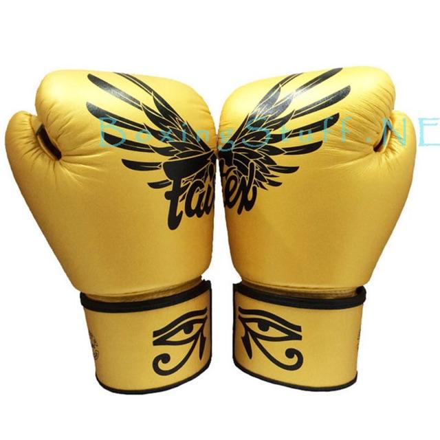 Limited SPECIAL Edition!!! นวมชกมวย Fairtex ลายฟัลคอน / Fairtex Boxing Gloves BGV1 Limited Editon FALCON