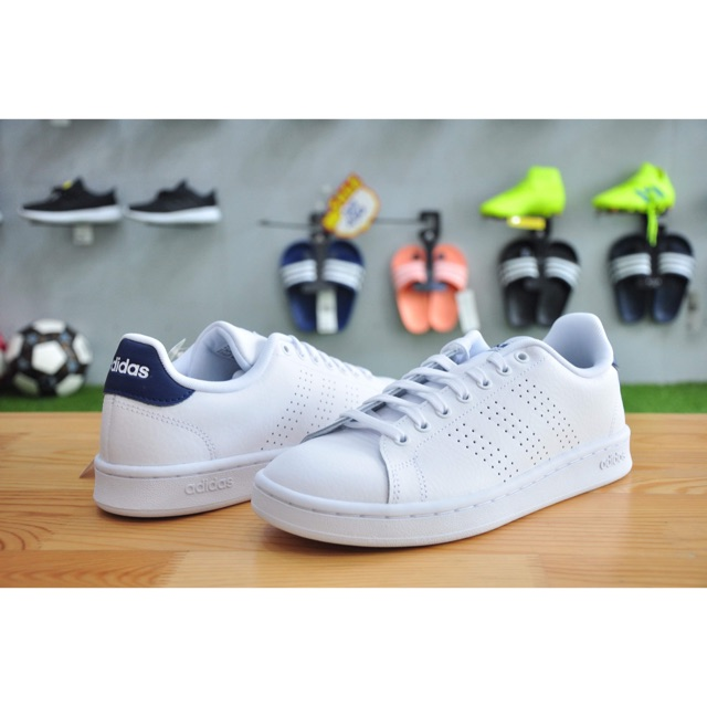 Artù composito digerire  adidas TENNIS MEN ADVANTAGE (F36423)   Shopee Thailand