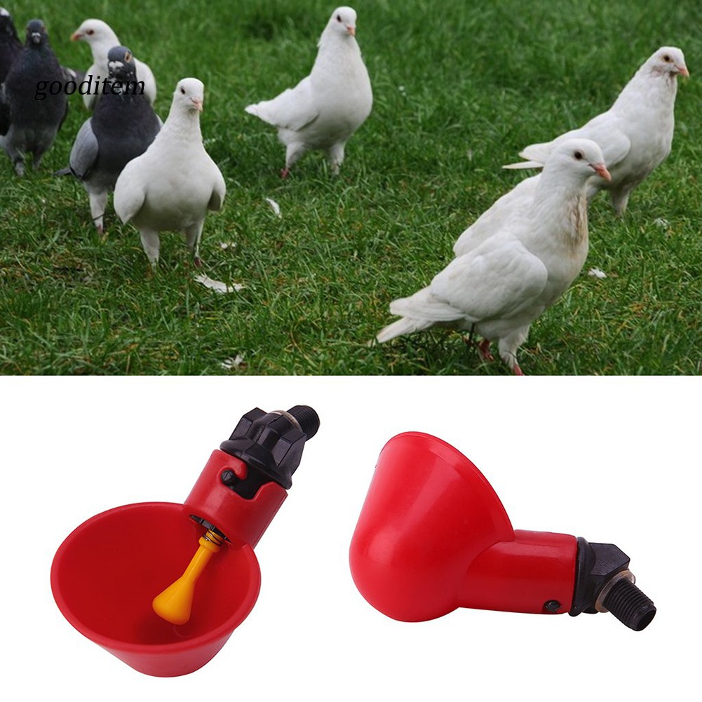 10 pcs Automatic Poultry Waterer Cups Quail Pigeon Water Feeder Chicken Drinker