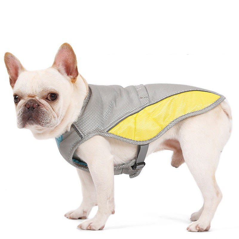 Supreme dog hoodie designer Pet Xs-XXL