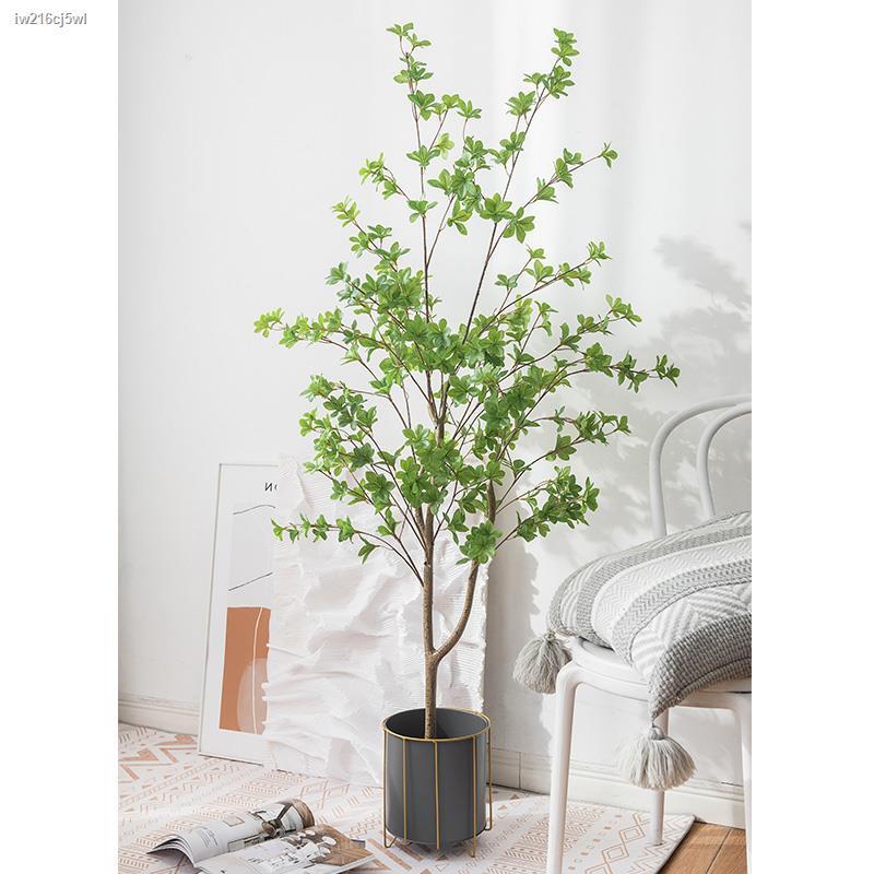 การจำลองพันธุ์ไม้อวบน้ำ┅นอร์ดิกลมจำลอง พืชสีเขียว กระดิ่งญี่ปุ่น ม้า เมา ไม้ตกแต่งต้นไม้ ต้นไม้ปลอม ในร่ม ห้องนั่งเล่น พ