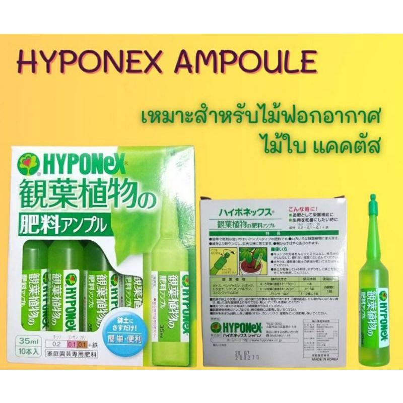 Hyponex Ampoule 💚สีเขียวอ่อน💚ปุ๋ยปัก💚ปุ๋ยญี่ปุ่น🍀ปุ๋ยปักญี่ปุ่น☘ไฮโปเน็กซ์☘