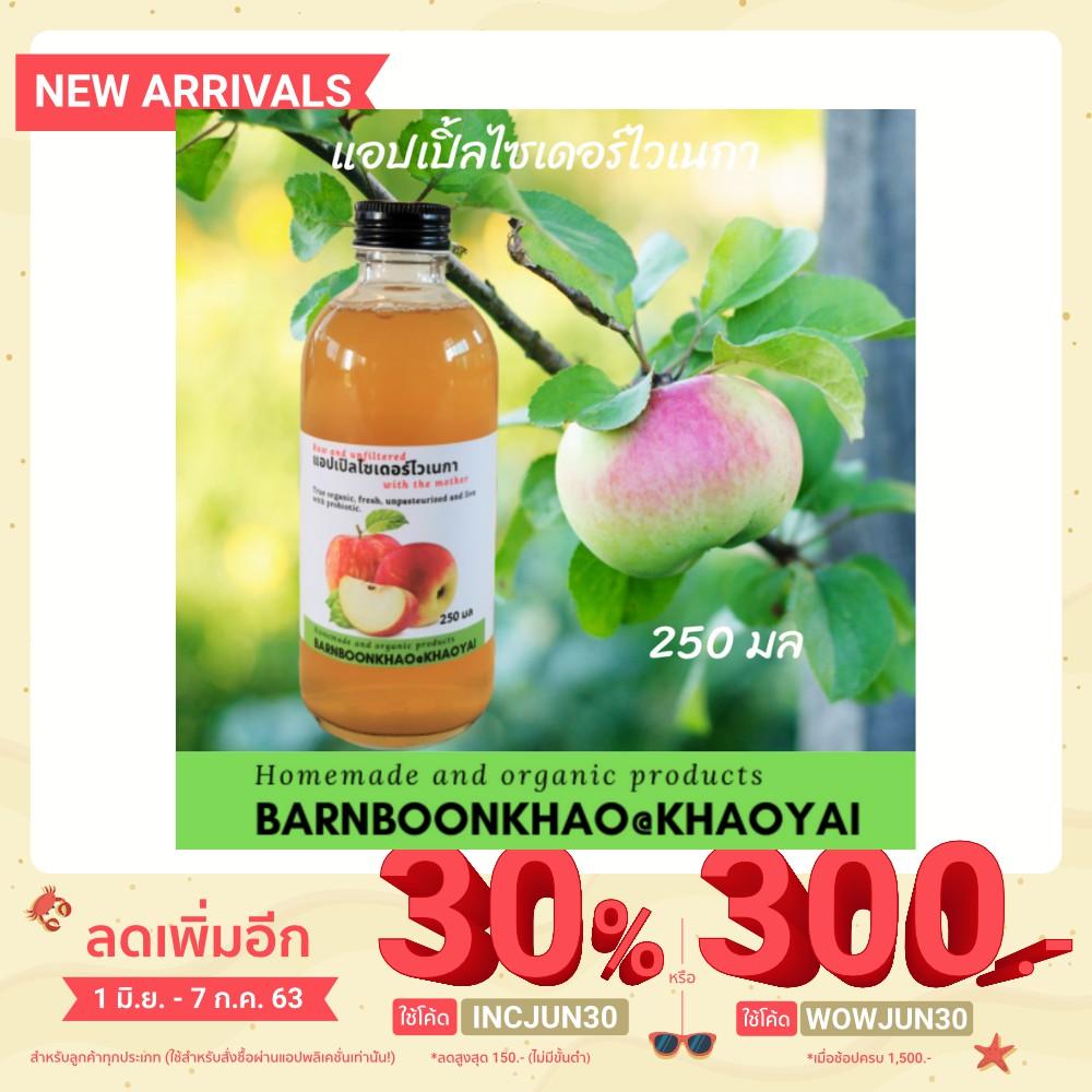 แอปเปิ้ลไซเดอร์ไวเนกา Apple cider vinegar ขนาด 250 ซีซี