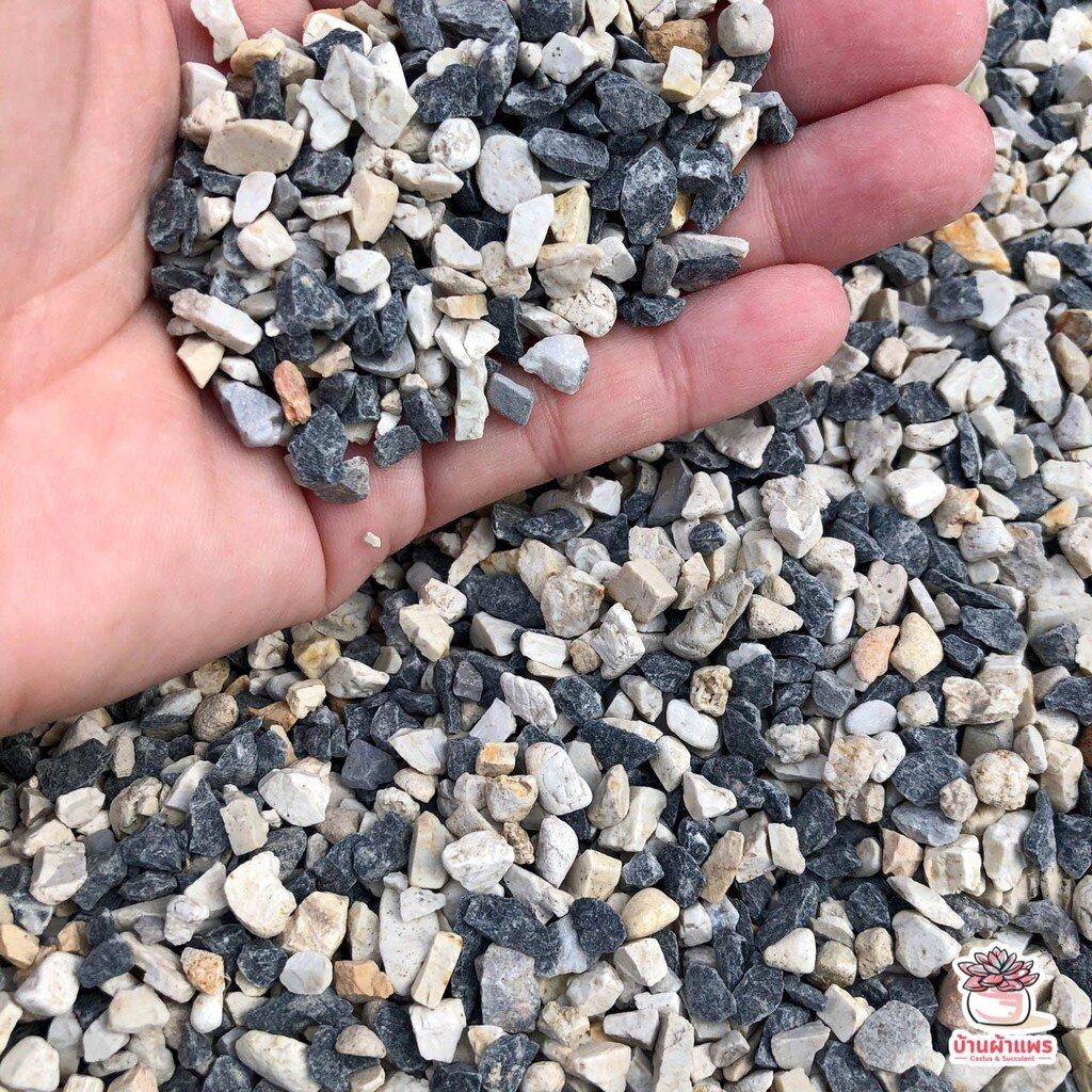ถุงละ 1 กก. หินเกล็ดเทาดำใหญ่ หินโรยหน้ากระถาง แคคตัส กระบองเพชร ไม้อวบน้ำ