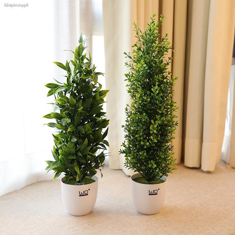 การจำลองพันธุ์ไม้อวบน้ำ﹉◊wo + ลมนอร์ดิกจำลองพืชกระถางต้นคริสต์มาสปลอม pine cone tree bonsai สำนักงานหน้าต่างตกแต่ง props