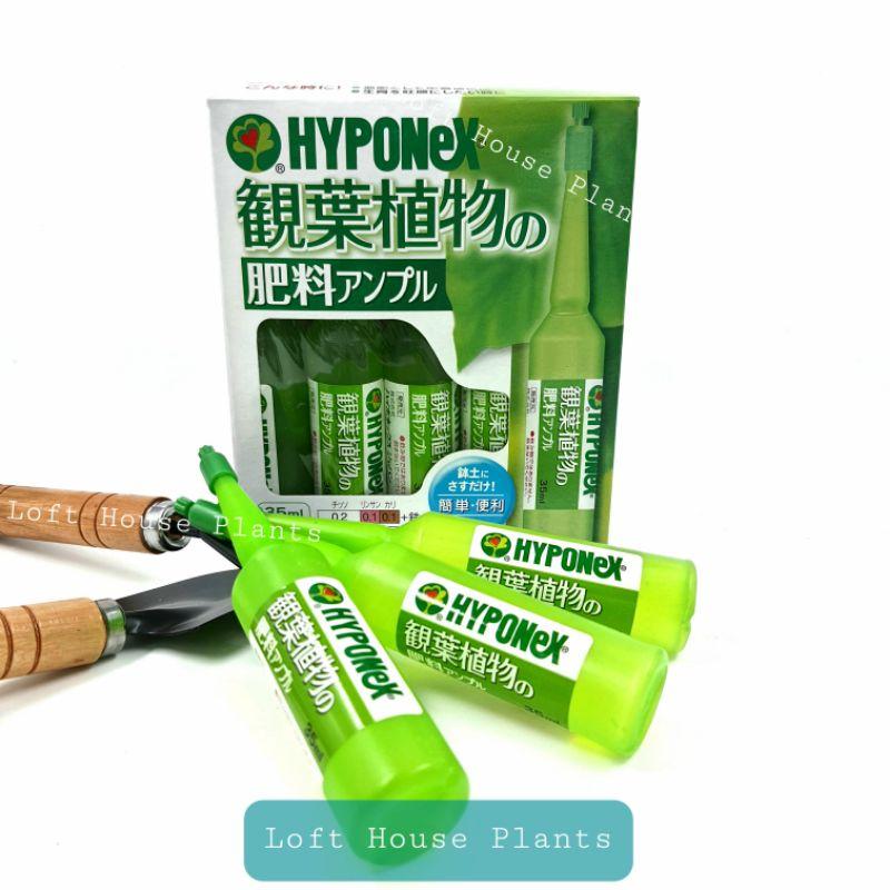 ปุ๋ยปัก Hyponex Ampoule สีเหลือง , สีเขียวอ่อน ของแท้จากญี่ปุ่น แบ่งขาย