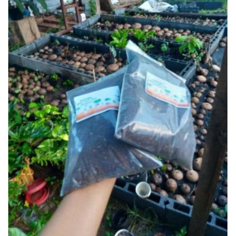 ดินปลูกไม้อวบน้ำแคสตัส 1 กิโลกรัม