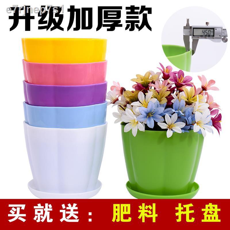 กระถางดอกไม้ข้น [ส่งถาด + เมล็ดพันธุ์ดอกไม้ ผงรากไขมัน] กระถางดอกไม้พลาสติกสำหรับต้นไม้สีเขียวดอกไม้และไม้อวบน้ำ