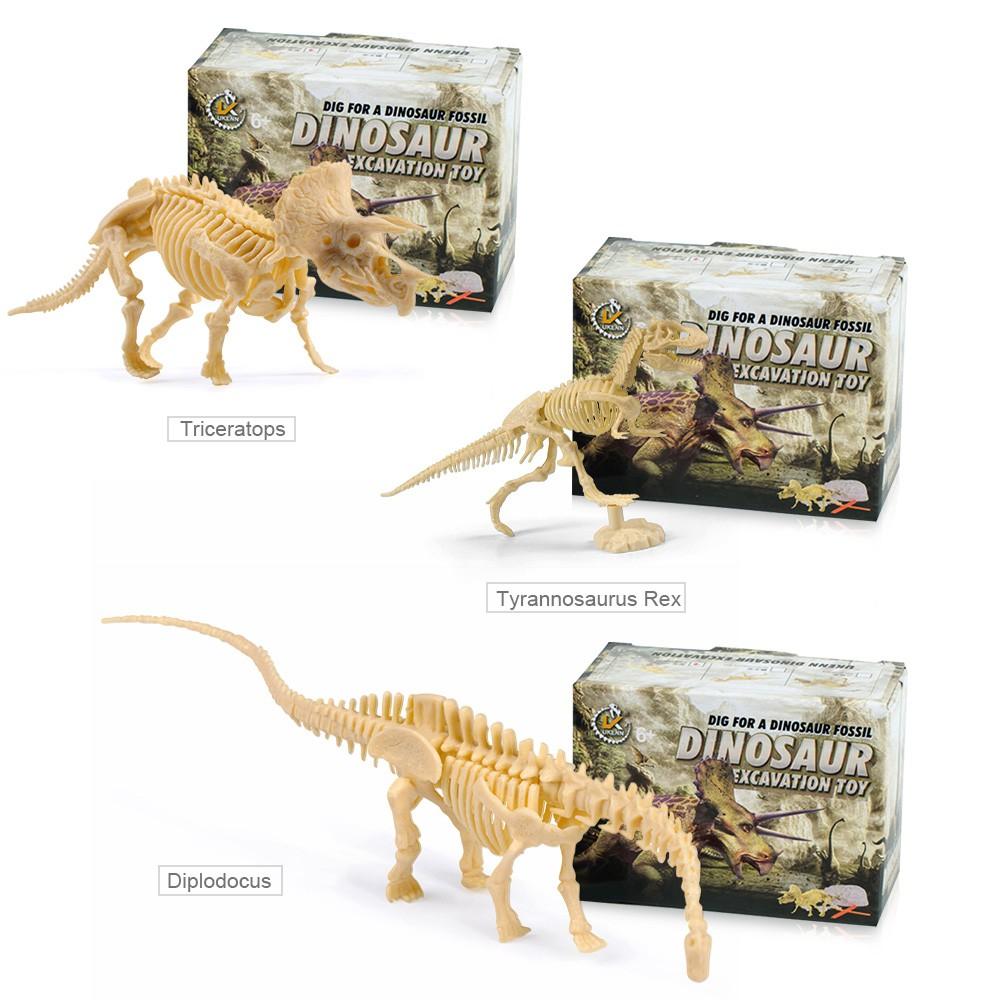 Dig Out squelette de dinosaure fossile archéologie Excavation Kit for Kids ~ T Rex