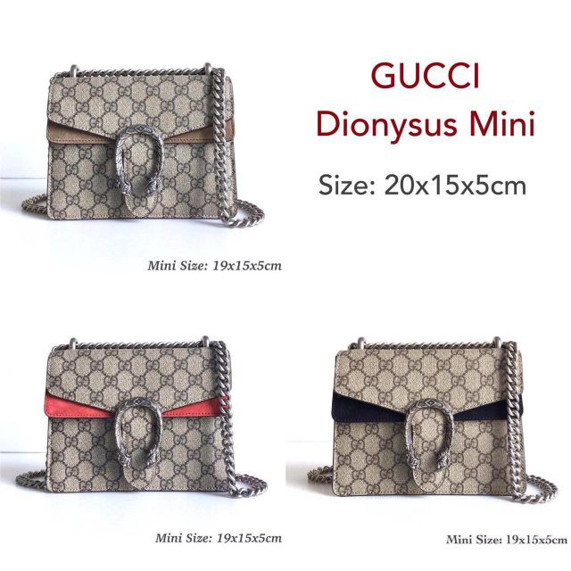 New Gucci Dionysus mini