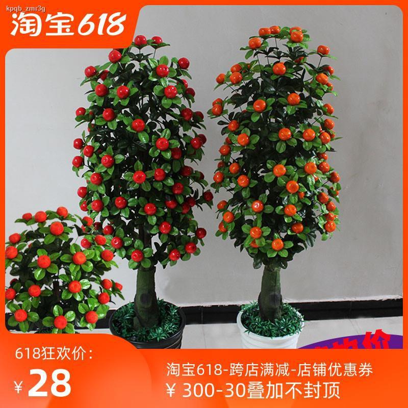 การจำลองพันธุ์ไม้อวบน้ำ✚❅ต้นส้มควอตจำลองปลอดภัยและตกแต่งต้นไม้ปลอมให้โชคลาภ ผลไม้และดอกไม้ปลอม พืชสีเขียวจากพื้นจรดเพดาน