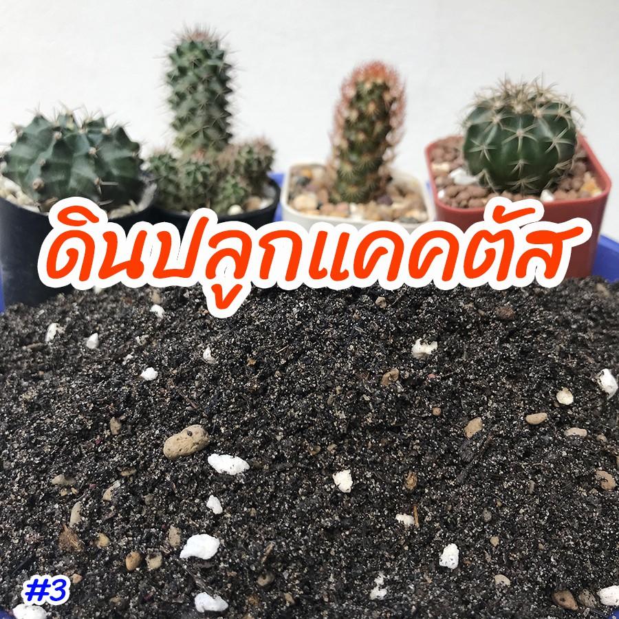 ดินปลูกเเคคตัส ดินปลูกกระบองเพชร ดินปลูกไม้อวบน้ำ พร้อมใช้ปลูกได้ทันที 1 กิโล