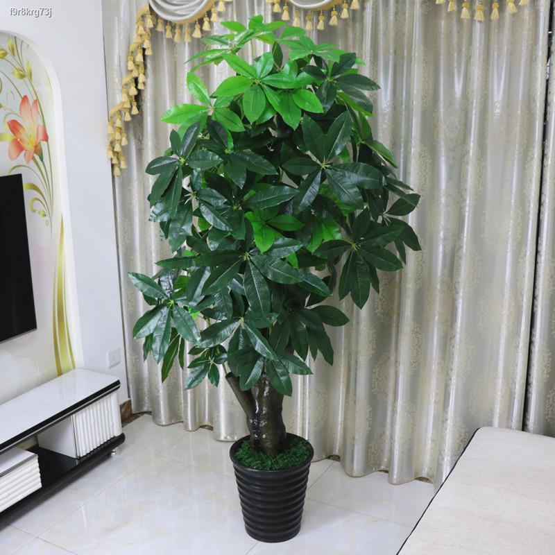 การจำลองพันธุ์ไม้อวบน้ำ✷❅﹍> ต้นไม้ปลอม, ต้นไม้จำลองโชคลาภ, ไม้กระถางบนพื้น, บอนไซห้องนั่งเล่นขนาดใหญ่, ดอกไม้ปลอม, ตกแต่