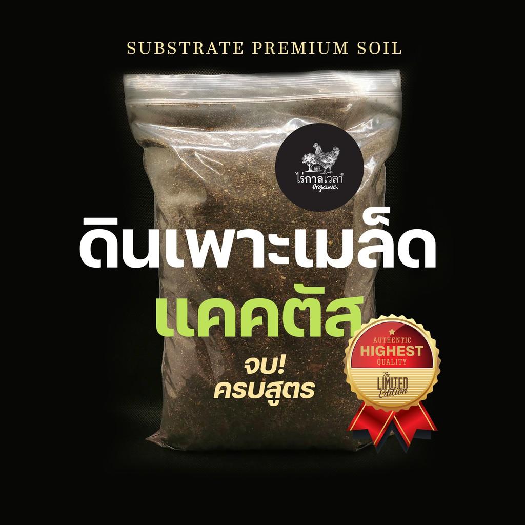 ดินเพาะเมล็ด แคคตัส และไม้อวบน้ำ จบ! ครบสูตรในถุงเดียว 700กรัม 29บาท Premium Cactus & Succulent Seeding Soil Mix