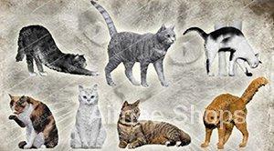 Unpainted Kit 1/35 modern cats include 7 Resin Figure miniature garage kit ASYV