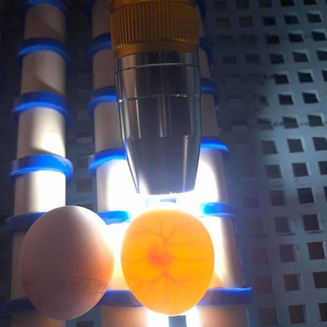 ไฟฉายส่องไข่LEDสำหรับส่องเชื้อในไข่และส่องหินหยกเพชรพลอยมรกตอัญมณี