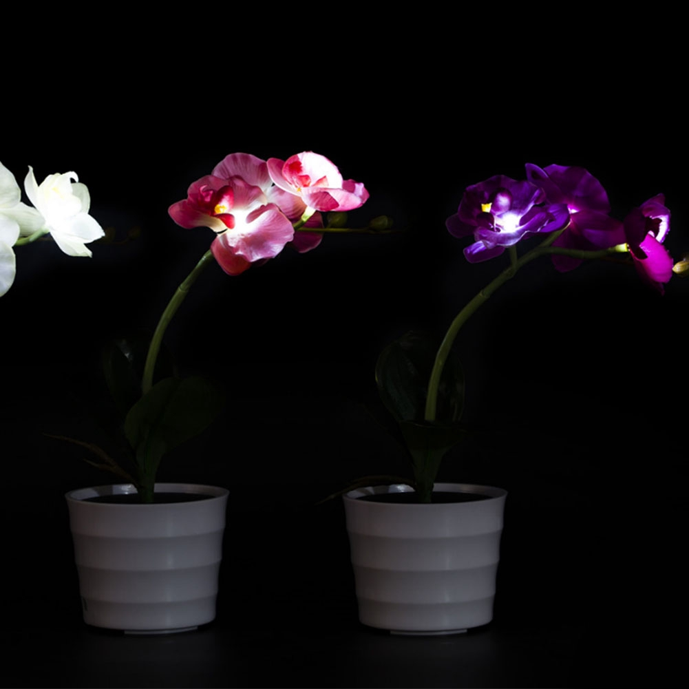 Indoor Bedroom Solar Light Hotel Office Outdoor Potted Plant Energy Saving Home Led Decorative Fake Phalaenopsis Nightlight High Quality And Inexpensive Lights & Lighting Led Table Lamps