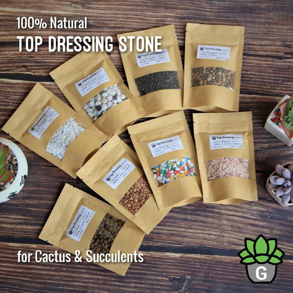 ♙┅✕Top Dressing หินโรยแบบต่างๆ G Succulents กุหลาบหินนำเข้า ไม้อวบน้ำ