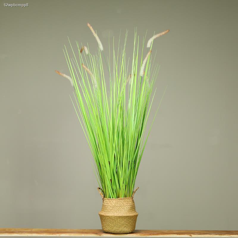 การจำลองพันธุ์ไม้อวบน้ำ﹍┋❀พืชเทียม พืชสีเขียว กระถางต้นไม้ปลอม การตกแต่งภายในแบบนอร์ดิก พื้นห้องนั่งเล่น หางต้นหญ้ากกขนา