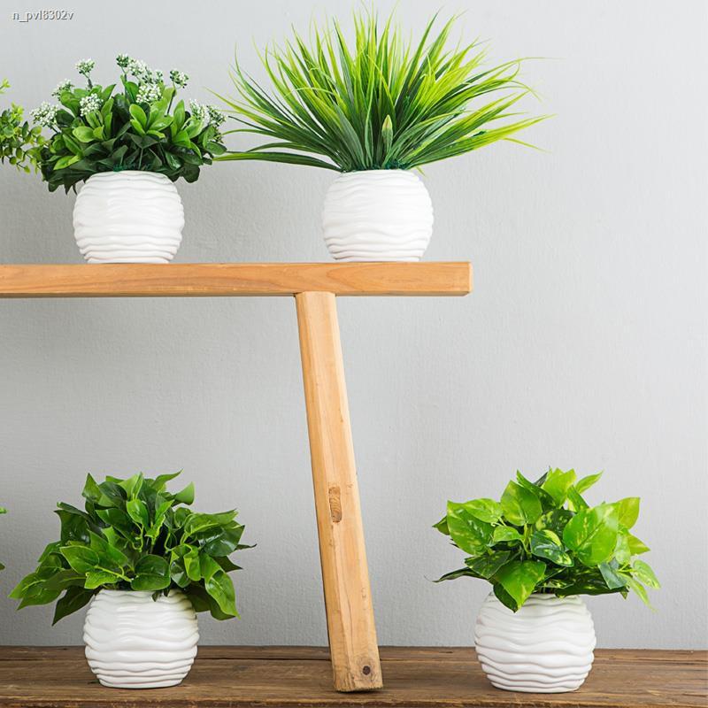 การจำลองพันธุ์ไม้อวบน้ำ✱◈▦ไม้เทียมชุดเครื่องประดับ พืชสีเขียว ไม้กระถางขนาดเล็กตกแต่งดอกไม้พลาสติกดอกไม้ประดิษฐ์หญ้าปลอม