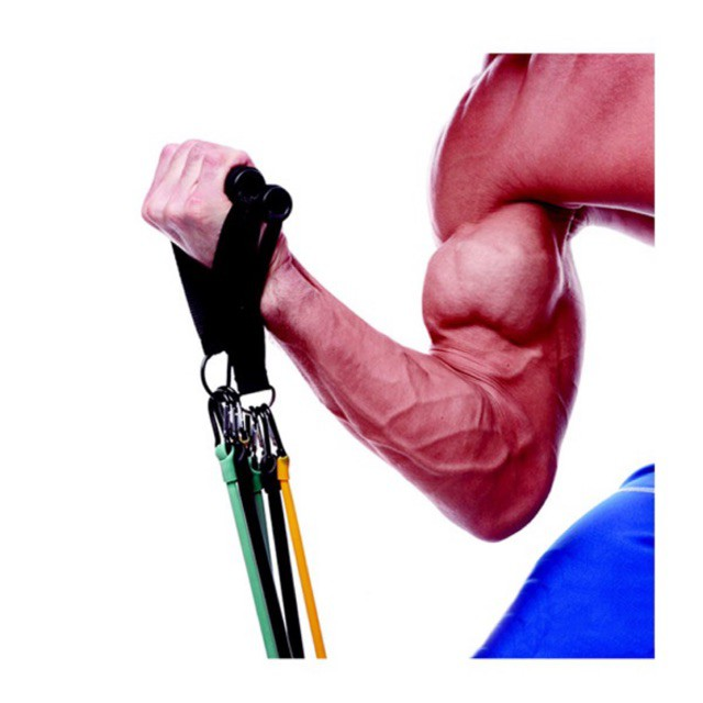 ยางยืดออกกำลังกาย ได้ทั้งชุด สายแรงต้าน  ผ้ายืดออกกำลังกาย ยางยืดแรงต้าน  ยางยืดออกกำลังกายแรงต้านสูง