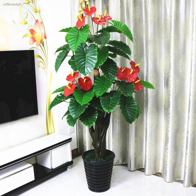 การจำลองพันธุ์ไม้อวบน้ำ◇﹍✑>หน้าวัวปลอมดอกไม้ประดิษฐ์ดอกไม้ประดิษฐ์กระถางต้นไม้พื้นขนาดใหญ่พืชสีเขียวห้องนั่งเล่นตกแต่งภา