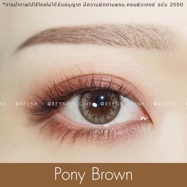🌟 pony brown 🌟 คอนแทคเลนส์ / มินิ / มีเก็บปลายทาง