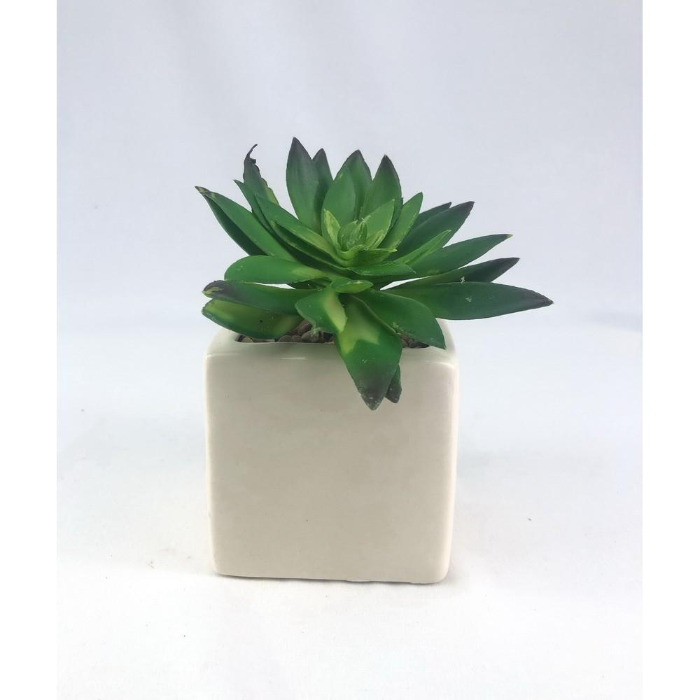 ไม้อวบน้ำ ปลอม (เฉพาะหัว ไม่รวมกระถาง) Artificial Succulent plant head for decoration
