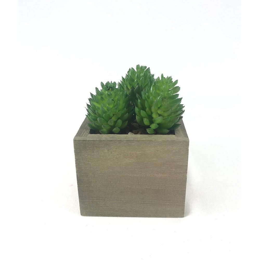 SET 3 หัว 100 บาท (ไม่รวมกระถาง) Succulent plant head ไม้อวบน้ำปลอม จัดสวนจิ๋ว Artificial decorative plant (3 piece set)