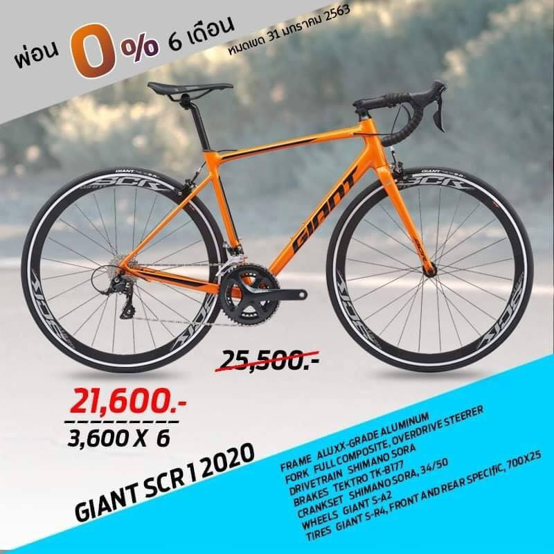 เสือหมอบ Giant SCR1 2020