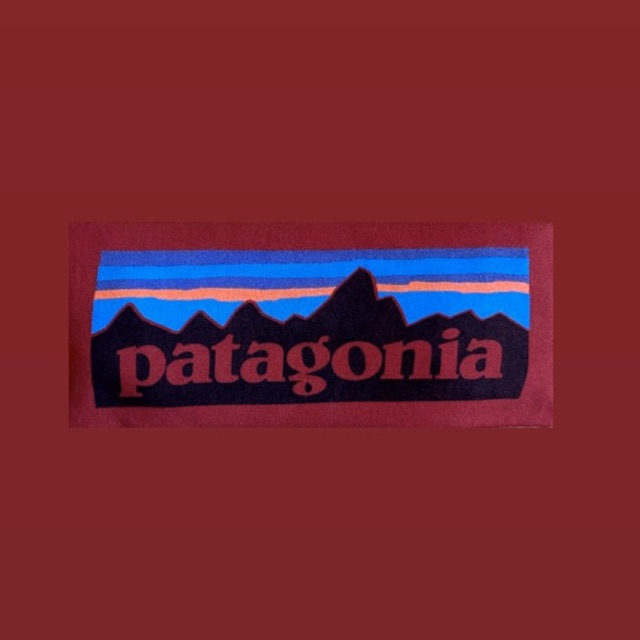 Patagonia long Sleeve (มือสอง) ของแท้ 💯