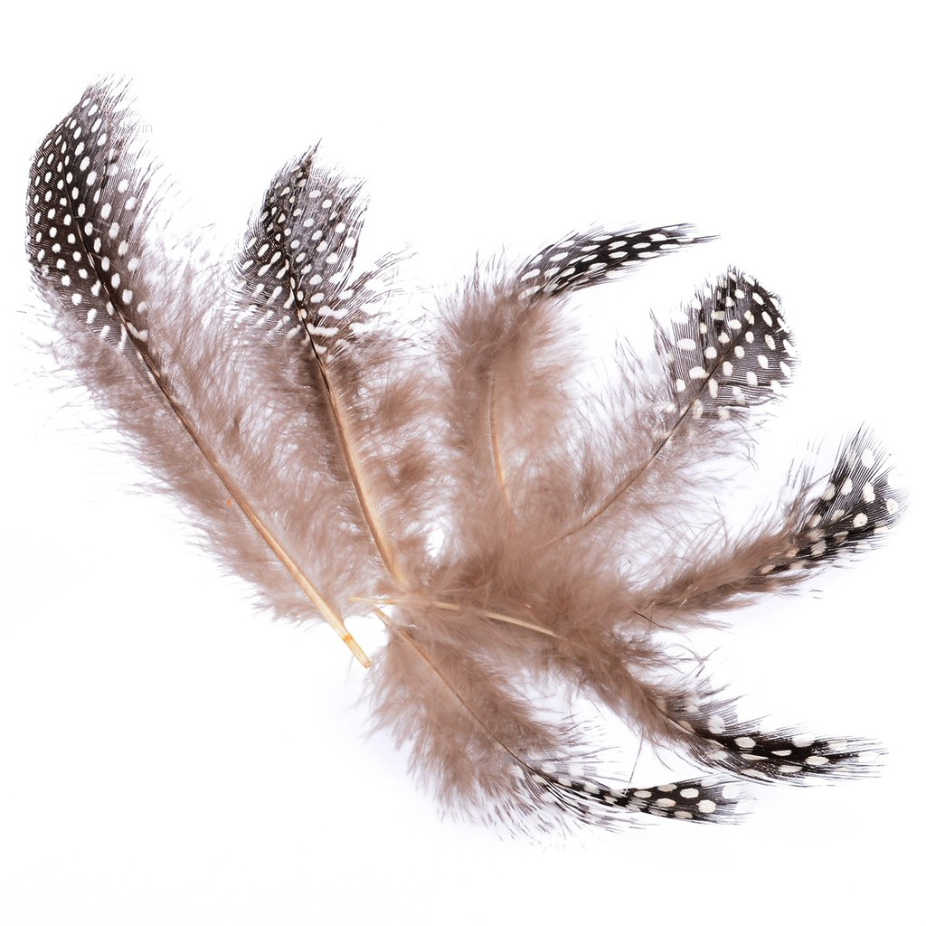 50pcs Spotted Guinea Fowl Plumage Feathers Millinery 4.5-10cm For Crafts DIY Bag