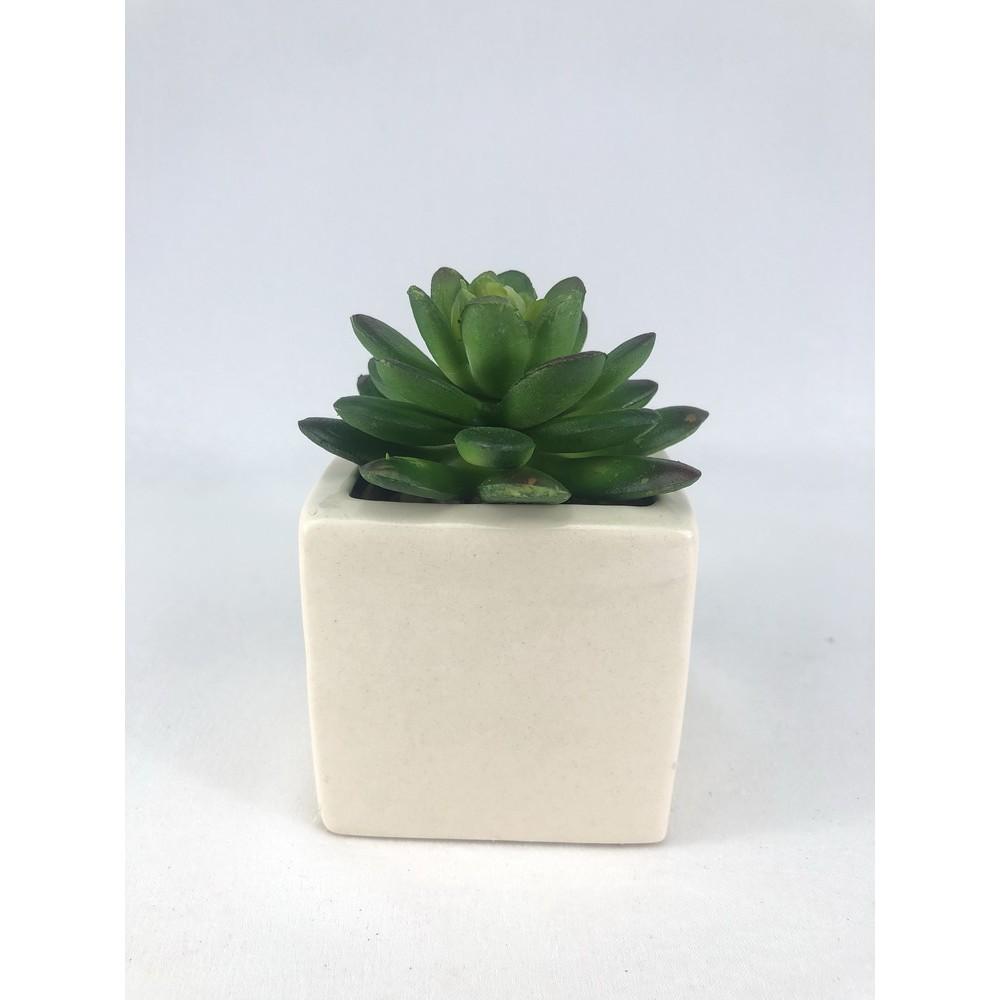 กุหลาบหินปลอม ไม้อวบน้ำ (เฉพาะหัว ไม่รวมกระถาง) Artificial decorative Succulent head (no pot)