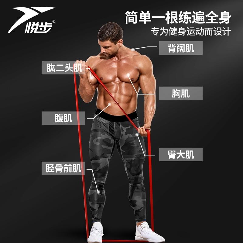 สายยางยืดออกกําลังกาย♗☈สายยางยืดสำหรับออกกำลังกายชาย สายต้าน การฝึกความแข็งแรง เชือกยางยืด แถบดึงกล้ามเนื้อหน้าอก สายดึง
