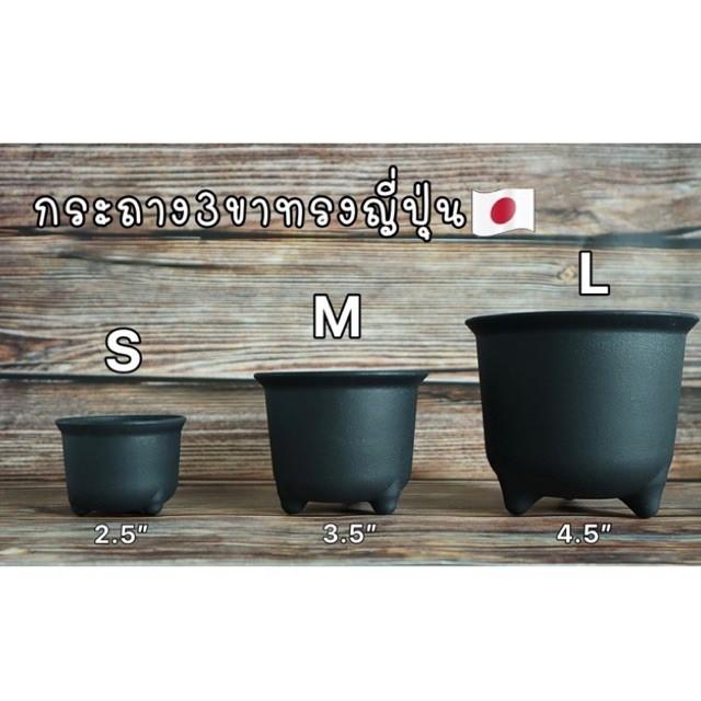 กระถางขาสิงห์ทรงญี่ปุ่น กระถาง3ขา กระถางแคคตัส กระบองเพชร หรือไม้อวบน้ำ