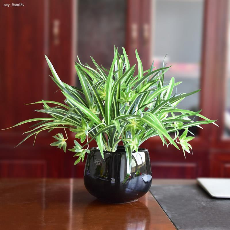 การจำลองพันธุ์ไม้อวบน้ำ✷ไม้เทียมสีเขียว ใบไม้ปลอม นาร์ซิสซัสในร่ม ดอกไม้กระถาง Chlorophytum พืชหวายสีเขียว กระเช้าแขวนตก