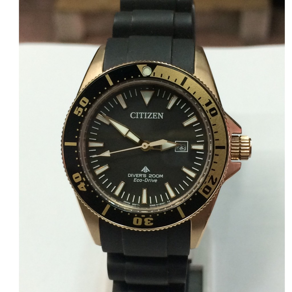 Citizen Eco-Drive Promaster หญิง รุ่นEP6044-01E