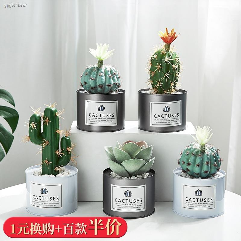 การจำลองพันธุ์ไม้อวบน้ำ▼۩℗Nordic ins จำลองพืช potted เครื่องประดับสร้างสรรค์ปลอม succulent bonsai ห้องนั่งเล่นในร่ม offi