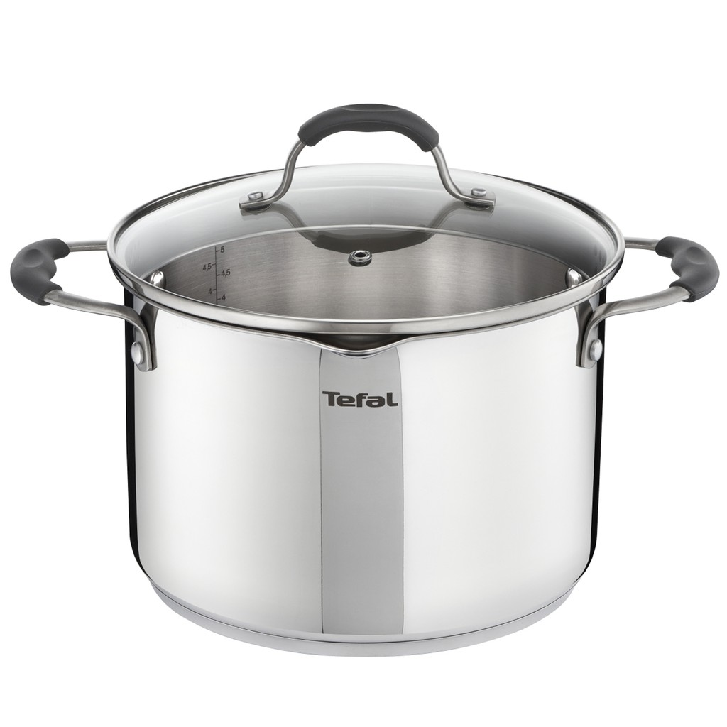 Tefal ILLICO Stainless Steel Induction Stockpot (22cm 5.3L) Dishwasher Oven Safe No PFOA Silver